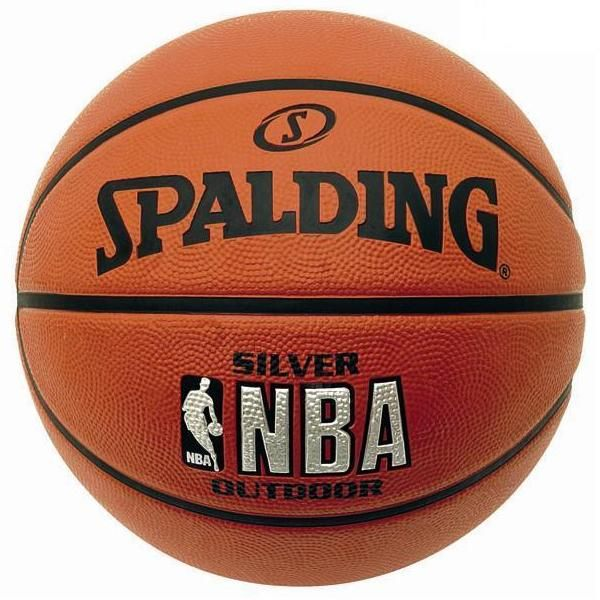 Minge Spalding NBA Silver Youth Outdoor Foto 1
