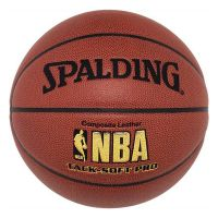 Minge Spalding NBA Tacksoft Pro Youth