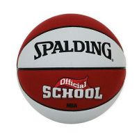 Minge Spalding NBA School Out silver/red 5